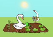 swan allotment