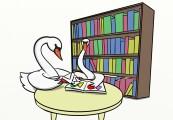 swan reading2