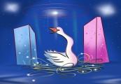 swan sensory